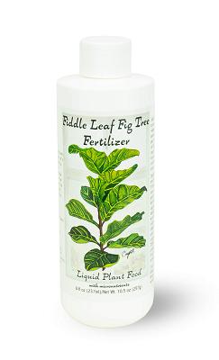 fertilizer and soil for fiddle leaf fig