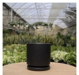 Pot for African Violets