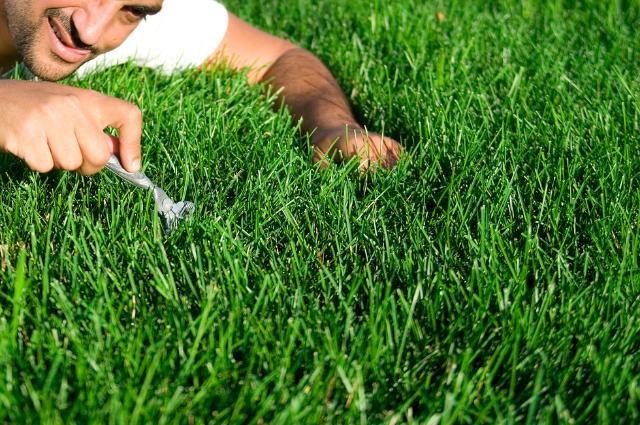Soil Test Kits For Lawns